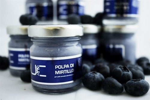 Polpa di Mirtillo 30ml