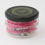icable cable iphone ipad